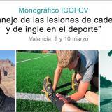 El danés Kristian Thorborg, especialista en fisioterapia deportiva, impartirá un monográfico del ICOFCV