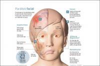 La labor del fisioterapeuta es fundamental en la recuperación de la función facial tras una parálisis vía LaRazon.es